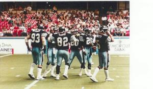 Arena Football - Chicago Bruisers